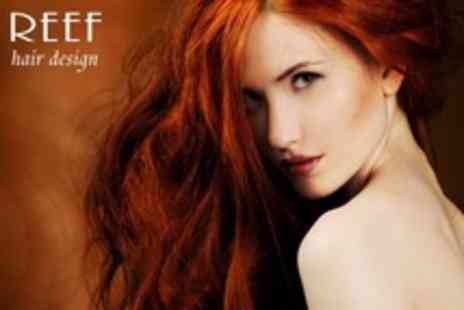 Reef Hair Design - Full Head of Colour With Cut and Blow Dry Plus Conditioning Treatment - Save 56%