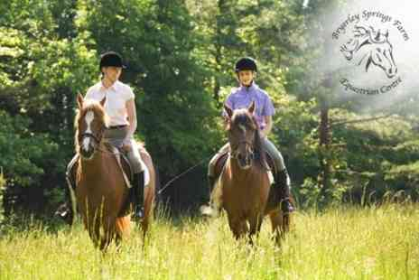 Bryerley Springs Farm Equestrian Centre - Private Horse Riding Lesson For Two - Save 63%