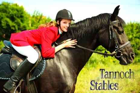 Tannoch Stables - Two Horse Riding Lessons - Save 60%
