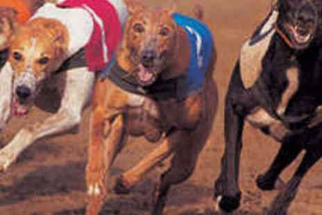 Poole Greyhounds - Entry to the Greyhound Racing with Meal for Two - Save 70%