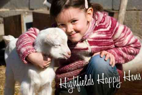 Highfields Happy Hens - Full Day Open Farm Experience For Four With Two Bags of Animal Feed for £10.50 - Save 60%