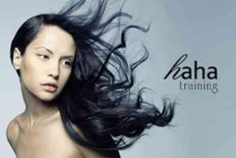 HAHA Salon - Cut and Blow Dry With Conditioning Treatment - Save 60%
