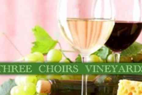 The Three Choirs Vineyards - Vineyard Tour With Wine Tasting Plus Rustic Cheese Board Lunch and Coffee For Two - Save 55%