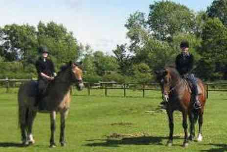 Longacres Riding School - Childrens Beginner Horse Riding Lesson - Save 54%