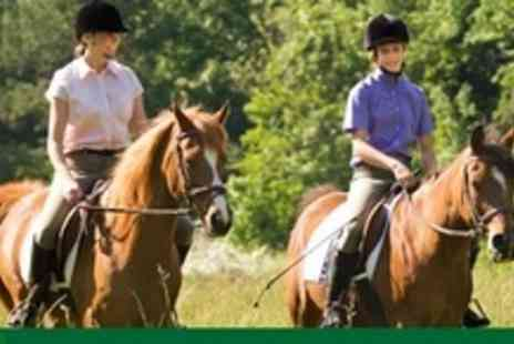 Barleyfields Equestrian Centre - Two 30 Minute Horse Riding Lessons or Hacking for Children - Save 62%