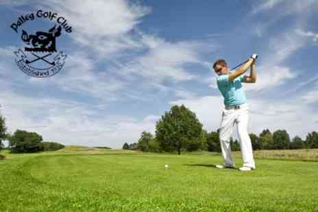Palleg & Swansea Valley Golf - Day of Golf For Two With Freshly Filled Roll Each - Save 53%