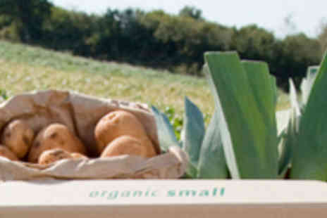 Riverford Organic - Three Small Organic Veg Boxes with Delivery - Save 95%