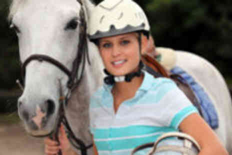 Brimington Equestrian Centre - Riding lesson - Save 61%