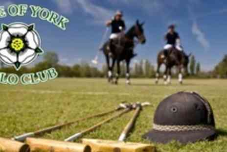 Vale of York Polo Club - Two 60 Minute Polo Lessons - Save 70%