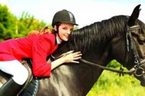 Bluesky Equestrian Event Centre - Two 60 Minute Horse Riding Lessons - Save 76%