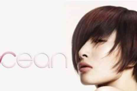 Ocean Hair - Half Head of Highlights Using Aveda Products With Conditioning Treatment - Save 58%