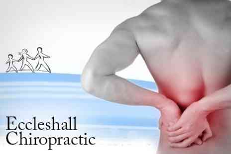 Eccleshall Chiropractic - Eccleshall Chiropractic Back and Neck Pain Consultation With Deep Tissue Massage and Three Treatments - Save 74%