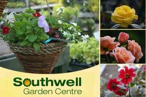 Southwell Garden Centre - Two Course Lunch For Two - Save 50%