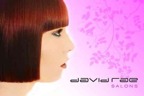 David Rae Salons - Cut, Conditioning Treatment, and Blow Dry - Save 71%