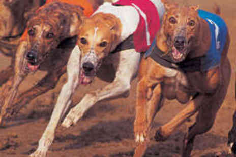 Sunderland Dogs - Entry to Dog Racing for Two with Meal and Drinks - Save 75%