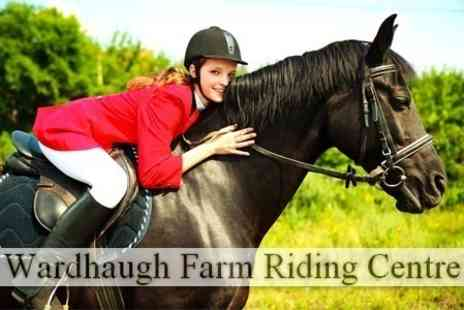 Wardhaugh Farm Riding Centre - Horse Riding Two Hour Lesson or Hack For One - Save 66%