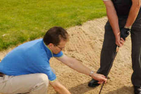 The Golf Swing Company - Golf Lesson with Video Analysis - Save 63%