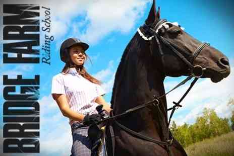 Bridge Farm Riding School - Horse Riding Two Lessons For One - Save 50%