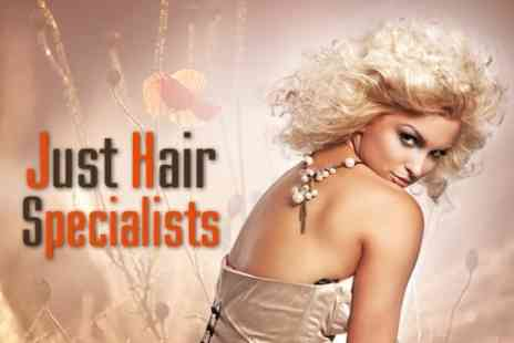 Just Hair Specialists - Restyle Cut With Conditioning Treatment Plus Half Head Highlights - Save 79%