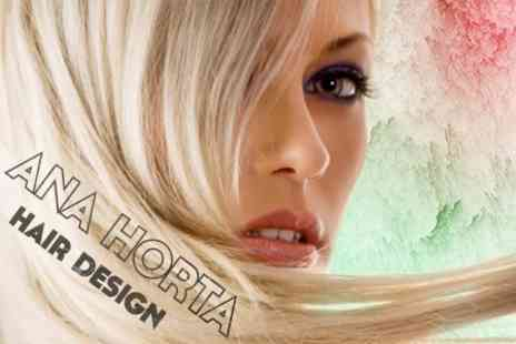 Ana Horta Hair Design - Restyle, Blow Dry, Conditioning Treatment and Finish - Save 65%