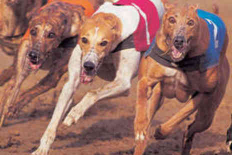 Swindon Greyhounds - Entry to Greyhound Racing for Two, Food, and Drink - Save 63%