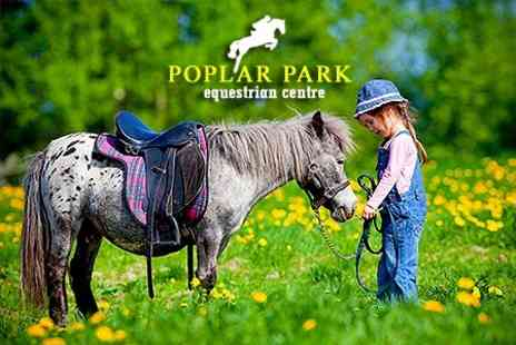 Poplar Park Equestrian Centre - Family Pony Experience and Entrance to The Suffolk Punch Trust - Save 29%