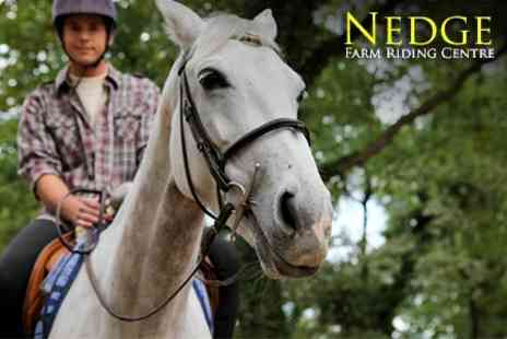 Nedge Farm Riding Centre - Horse Riding Lesson - Save 51%