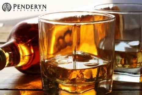 Penderyn Distillery - One Hour Tour With Tasting For Two - Save 58%
