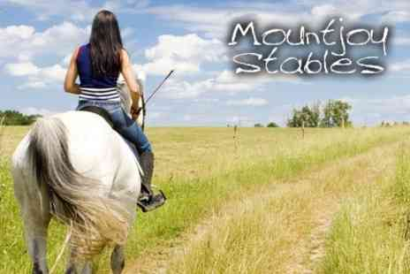 Mountjoy Stables - Two Horse Riding Lessons Suitable for Adults or Children for £18 - Save 55%