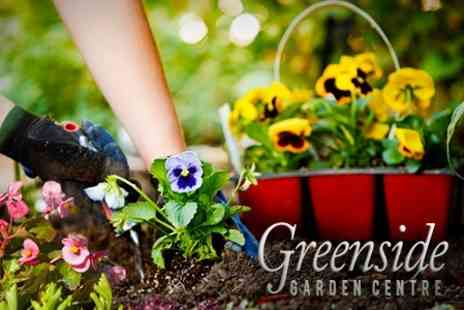 Greenside Garden Centre - Home and Garden Products - Save 50%
