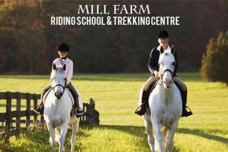 Mill Farm Riding School - Scenic 90 Minute Horse Riding Trek For One People - Save 60%