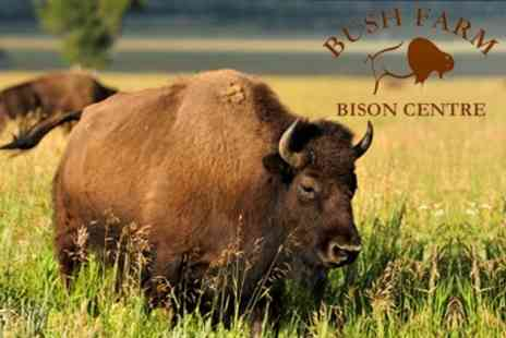 Bush Farm Bison Centre - Entry For Two - Save 59%