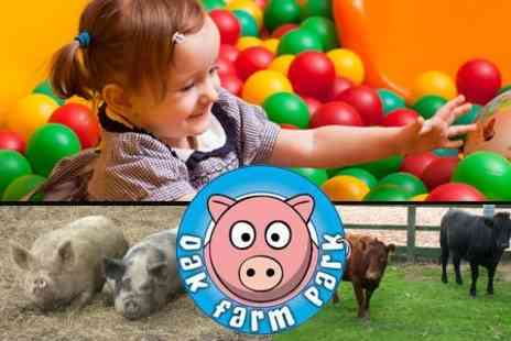 Oak Farm Park - Entry and Soft Play For Two Adults and Two Children - Save 57%