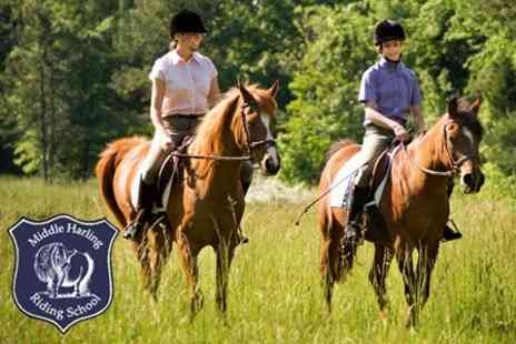 Middle Harling Riding School - Horse Riding Woodland Hack With Assessment For One - Save 34%