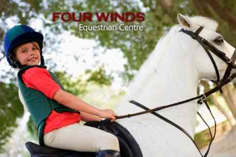 Fourwinds Equestrian Centre - Horse Riding and Stable Management Lesson - Save 59%