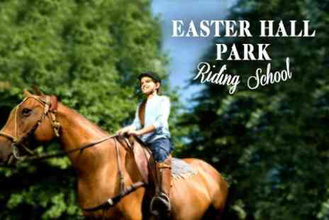 Easter Hall Park Riding School - Horse Riding Lesson and Hack For One - Save 51%