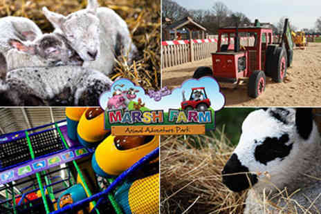 Marsh Farm - Marsh Country Park Farm in Essex a great family  - Save 56%