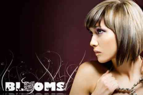 Blooms Hair - Half Head Highlights or Full Head Semi Permanent Colour With Cut and Finish - Save 66%