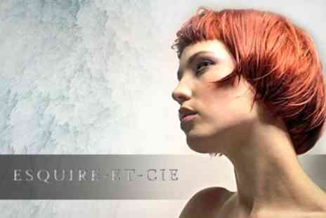 Esquire-Et-Cie - Paul Mitchell Colour Half Highlights or Full Colour Plus Cut and Blow Dry - Save 64%