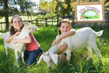 Mrs Dowsons - Family Farm Entry With Drinks - Save 50%