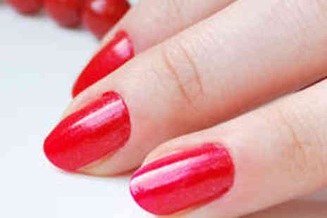 J Adore Nails - Shellac Manicure and Pedicure - Save 68%