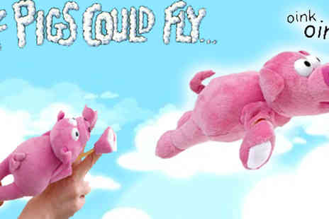 Assist World - £6.99 instead of £19.99 for a Flying Pig slingshot, a perfect gift - Save 65%