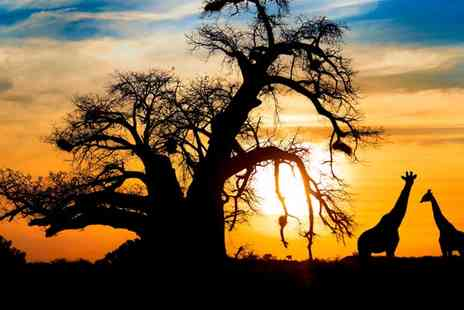 Encounters Travel - South Africa 9 Day Tour - Save 34%