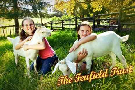 The Feufield Trust - Family Entry With Animal Feed - Save 50%