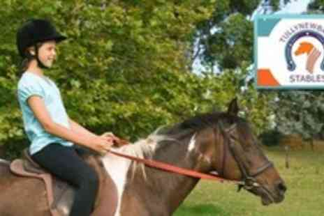 Tullynewbank Stables - Two Horse Riding Lessons For Adults - Save 64%