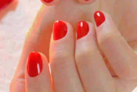 Wollaton Beauty Lounge - Gel Nails for Fingers - Save 53%