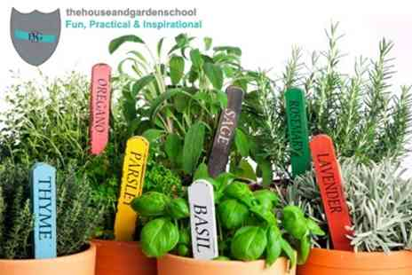 The House and Garden School - Culinary Herb Growing Workshop - Save 62%
