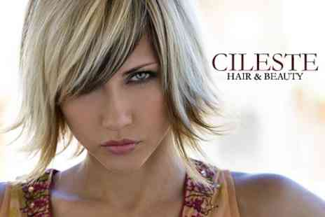Cileste Hair and Beauty - Cut, Restyle and Half Head Highlights or Full Head Colour - Save 63%