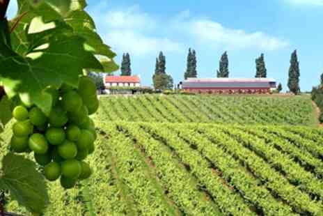 Three Choirs Vineyards - Top Rated Vineyard Tour for 2 with Tastings - Save 50%