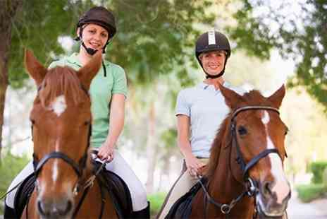 Sunshine Riding School - Horse Riding Lesson and Hack - Save 42%